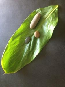 Ki leaf with stones